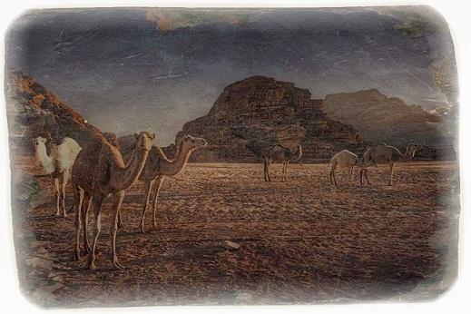 Акаба - Вади Рам - старое фото